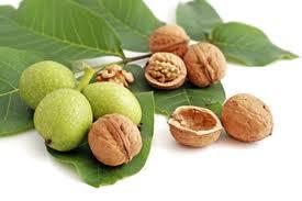 chandler-walnut